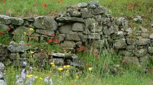 Mauern Gartengestaltung Heidelberg